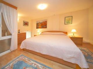 Vila Mila - Lozica vacation rentals