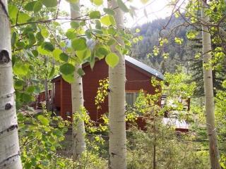 Spruce Ridge Guest Cabin - Salida vacation rentals