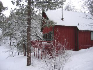 CHARMING CABIN w/ SPA & SLEDDING HILL-Near Slopes - Big Bear City vacation rentals
