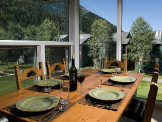 Liftside downtown condo with views-walk everywhere - Telluride vacation rentals