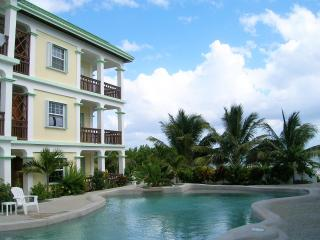 Picturesque Ocean Front Condo in Oasis del Caribe - San Pedro vacation rentals