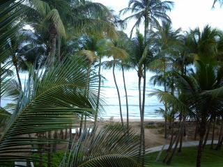 MARBELLA CLUB 441 - Humacao vacation rentals