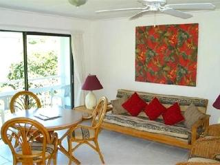 Breezeville Apartments -St.Vincent - Saint Vincent and the Grenadines vacation rentals