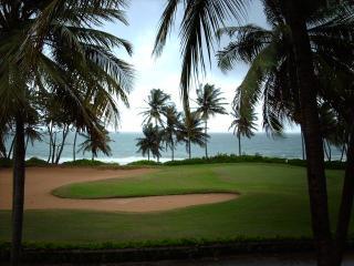 BEACH VILLA 217 - Humacao vacation rentals