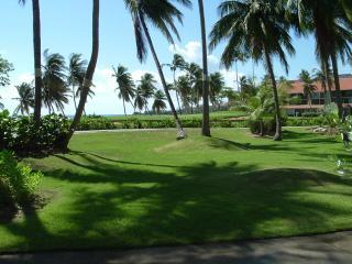 BEACH VILLA 227 - Humacao vacation rentals