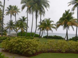 CRESCENT BEACH 135 - Humacao vacation rentals