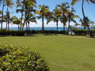 CRESCENT BEACH 251 - Humacao vacation rentals