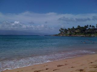 1 Bedroom  upstairs & 2 Bedroom downstairs - Lahaina vacation rentals