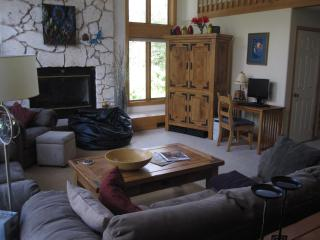 Spectacular Mountain Views in Three Bedroom House Vail, CO - Northwest Colorado vacation rentals