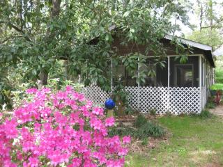 Songbird Cottage - Lake Conroe vacation rentals