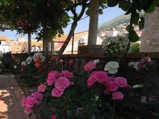 Family house fascination 1 - Dubrovnik vacation rentals