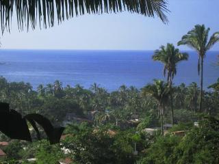 CASA BRAVA Modern ExtraPrivate Ocean-View Loft Apt - Sayulita vacation rentals