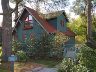 Flat Rock 3 BR, 3 BA House (Wisteria 99137) - Flat Rock vacation rentals