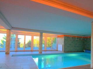 Villa Albert - 6 bedroom Home with indoor Pool - Visegrad vacation rentals
