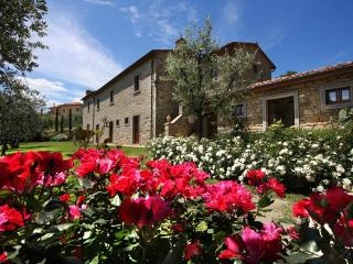 Luxury Villa, A/C, Views, village walking distance - Cortona vacation rentals
