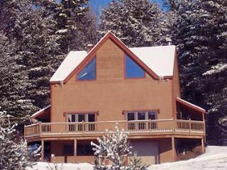 Immaculate Stratton Mount Snow Vacation Home - Stratton and Bromley Ski Areas vacation rentals