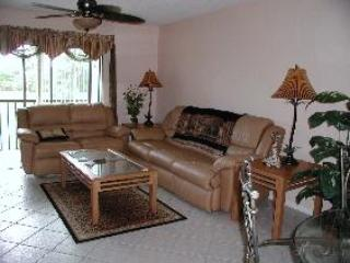 LIVING ROOM - Fairways at Par One - Naples - rentals