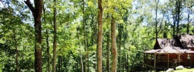 Sherwood Cabin - Romantic Sherwood Cabin, Soak in the Scenery! - Hot Springs - rentals