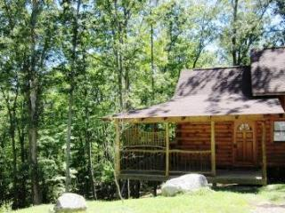 Romantic Sherwood Cabin, Soak in the Scenery! - Mars Hill vacation rentals