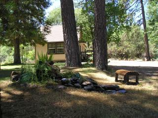 D&E Digs~relax in the woods under starlit skies... - Yosemite Area vacation rentals
