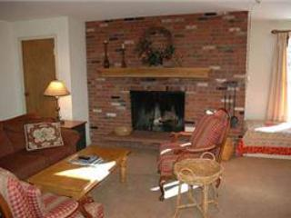 CHATEAU CHRISTIAN, 220 - Image 1 - Vail - rentals