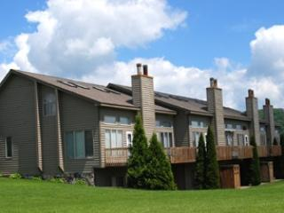 Deep Creek Village #06 - Image 1 - McHenry - rentals