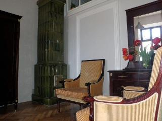 GREAT POINT Apartment  in the heart of  Old City - Poland vacation rentals