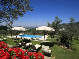 Romantic villa, pool, A/C, walking  Cortona - Arezzo vacation rentals