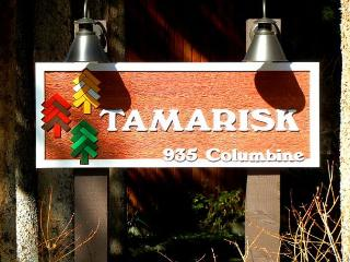 Tamarisk 203 - Breckenridge vacation rentals