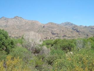 First Floor Condo with Golf and Mountain View - Tucson vacation rentals