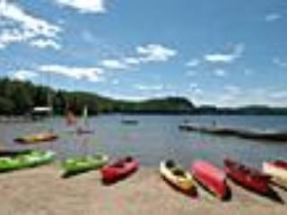 Beach - 3 Bedroom family Cottage in Muskoka (Lake of Bays) - Lake of Bays - rentals