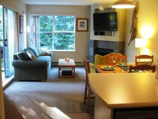 Stone Family Ski Pad - Slopeside 2bdrm/ba/flat scrns, hot tub, fully loaded - Whistler vacation rentals