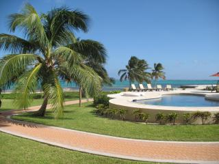 LUXURY CONDO ON AMBERGRIS...25 STEPS TO CARIBBEAN! - San Pedro vacation rentals