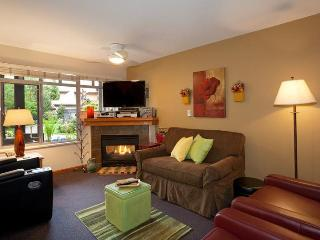 Sunpath condo; great location, well equipped - Whistler vacation rentals