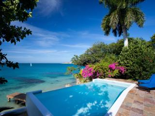 Culloden Cove - Jamaica vacation rentals
