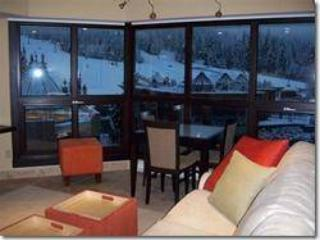 Your view from the living room - literally at the base of the mountain with slope side views! - Le Chamois Ski in SKi out - Whistler - rentals