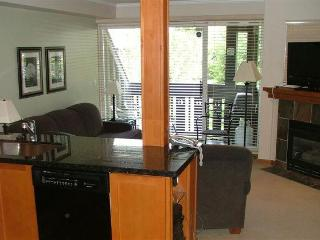 Peak 2 Peak Retreat - Whistler vacation rentals