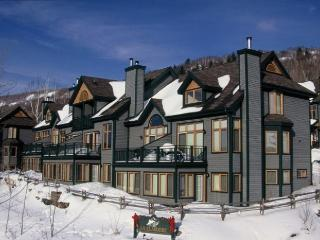 La Clairiere Unit 403 - Quebec vacation rentals