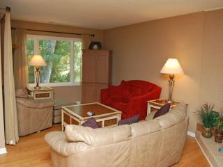 301 Golfmaster - Hilton Head vacation rentals