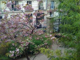 Garden2 - Paris vacation rentals
