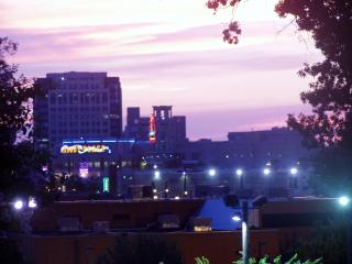 Beautiful condo on Memphis' Historic Beale Street - Memphis vacation rentals