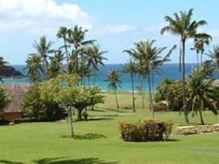 Beautiful Grounds in front of unit - Kepuhi Beach Resort ground floor condo - Maunaloa - rentals