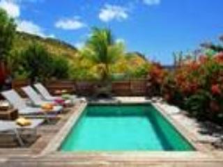Villa Bet Yam - Image 1 - Saint Barthelemy - rentals