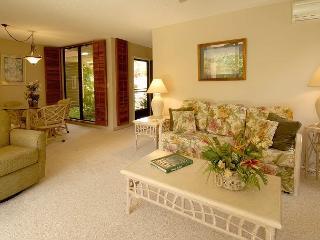 Wailea Ekahi #3C - Wailea vacation rentals