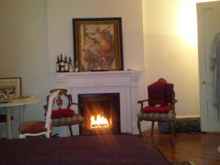 TERRACE LARGE STUDIO FAB WALK TO CENTRAL PARK! - New York City vacation rentals
