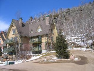 Beautiful Condo in Le Plateau - Mont Tremblant vacation rentals