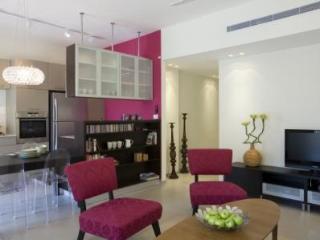 Great 3 Bed Apartment in the Center of Tel Aviv - Tel Aviv vacation rentals