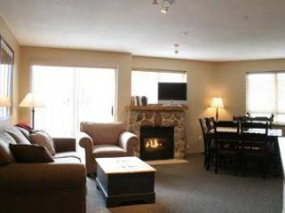 351 Deer Lodge - Whistler vacation rentals