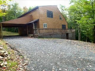 Affordably priced and amazingly nice mountain cottage offers peace and quiet. - Petersburg vacation rentals