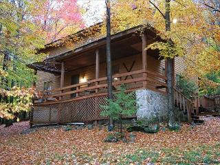 Comfortable Mountain Retreat - Canaan Valley vacation rentals